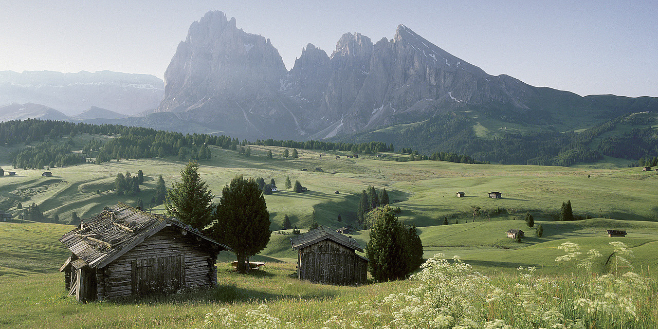 Natural landscape in South Tyrol in the summer